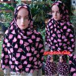 Syria Pink Tulip