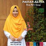 Pastan Aziya Non Pet