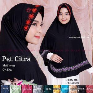 Jilbab Pet Citra
